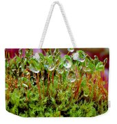 A Microcosm Of The Forest Of Moss In Rain Droplets Weekender Tote Bag