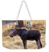 A Moose In Early Spring  Weekender Tote Bag