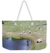 A Moose In The Rockies Weekender Tote Bag