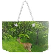 A Morning Stroll  Weekender Tote Bag