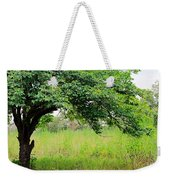 A Mulberry Summer Weekender Tote Bag