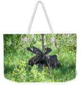 A Nap In The Grass Weekender Tote Bag