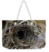 A Nest In A Box Weekender Tote Bag