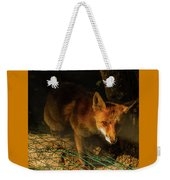 A Nocturne  Meeting With A Fox In The Woodland Weekender Tote Bag