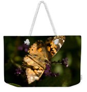A Painted Lady Butterfly At The Lincoln Weekender Tote Bag