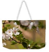 A Panoramic View Of A Cherry Tree Weekender Tote Bag