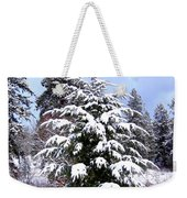 A Peaceful Winter Day Weekender Tote Bag