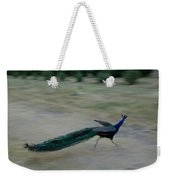 A Peacock On A Hog Farm In Kansas Weekender Tote Bag