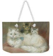 A Persian Cat And Her Kittens Weekender Tote Bag