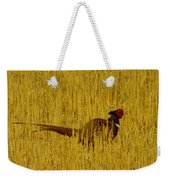 A Pheasant Looking For A Mate Weekender Tote Bag