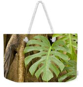 A Philodendron Grows On The Side Weekender Tote Bag
