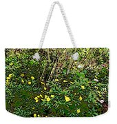 A Place Along The Way To Stop And Rest Weekender Tote Bag by Eikoni Images