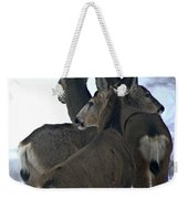 A Place To Rest Your Head Weekender Tote Bag