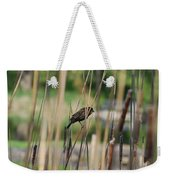 A Plumage Sparrow Weekender Tote Bag