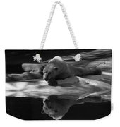 A Polar Bear Reflects Weekender Tote Bag
