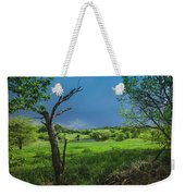 A Pond Just Outside Of Imre... Weekender Tote Bag