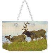 A Portrait Of A Large Bull Elk Following A Cow,rutting Season. Weekender Tote Bag