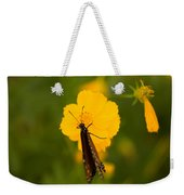 A Queen Butterfly At The Lincoln Weekender Tote Bag