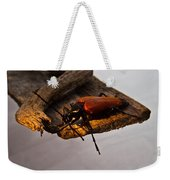 A Red Glowing Beetle Weekender Tote Bag