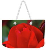 A Red Rose Unfolding  Weekender Tote Bag