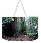 A Redwood Trail Weekender Tote Bag