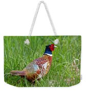 A Ring-necked Pheasant Walking In Tall Grass Weekender Tote Bag