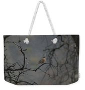 A Robin In Spring Snowfall  Weekender Tote Bag