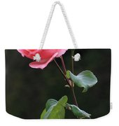 A Rose For Rodin Weekender Tote Bag