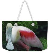 A Roseate Spoonbill Along The Gulf Weekender Tote Bag