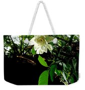 A Secret Place Weekender Tote Bag by Eikoni Images