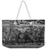 A Sedge Of Sandhill Cranes Weekender Tote Bag