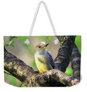 A Shady Woodland Bird Red-bellied Woodpecker Weekender Tote Bag