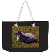 A Sheep In Wales Weekender Tote Bag