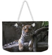 A Siberian Tiger At Omahas Henry Doorly Weekender Tote Bag