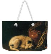 A Sleeping Dog With Terracotta Pot 1650 Weekender Tote Bag