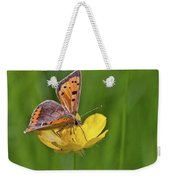A Small Copper Butterfly (lycaena Weekender Tote Bag
