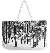 A Snowy Day Bw Weekender Tote Bag
