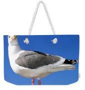 A Splendid Seagull Weekender Tote Bag