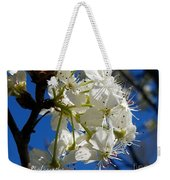 A Spring Delight Weekender Tote Bag