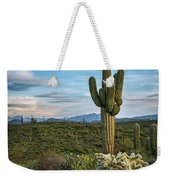 A Spring Evening In The Sonoran  Weekender Tote Bag