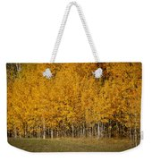 A Stand Of Aspen Weekender Tote Bag