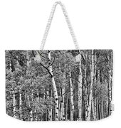 A Stand Of Aspen Trees In Black And White Weekender Tote Bag