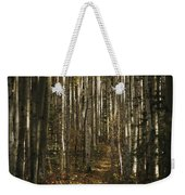 A Stand Of Birch Trees Show Weekender Tote Bag