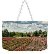 A Summer Dream Of Roses Weekender Tote Bag