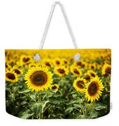 A Sunflower Plantation In Summer In South Dakota Weekender Tote Bag