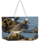 A Surfbird At The Tidepools Weekender Tote Bag