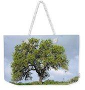 A Tale Of One Tree Weekender Tote Bag
