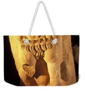 A Temple Winged Lion In The Petra Weekender Tote Bag