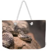 A Tiger Rattlesnake At The Henry Doorly Weekender Tote Bag