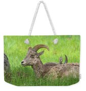 A Time To Rest Weekender Tote Bag